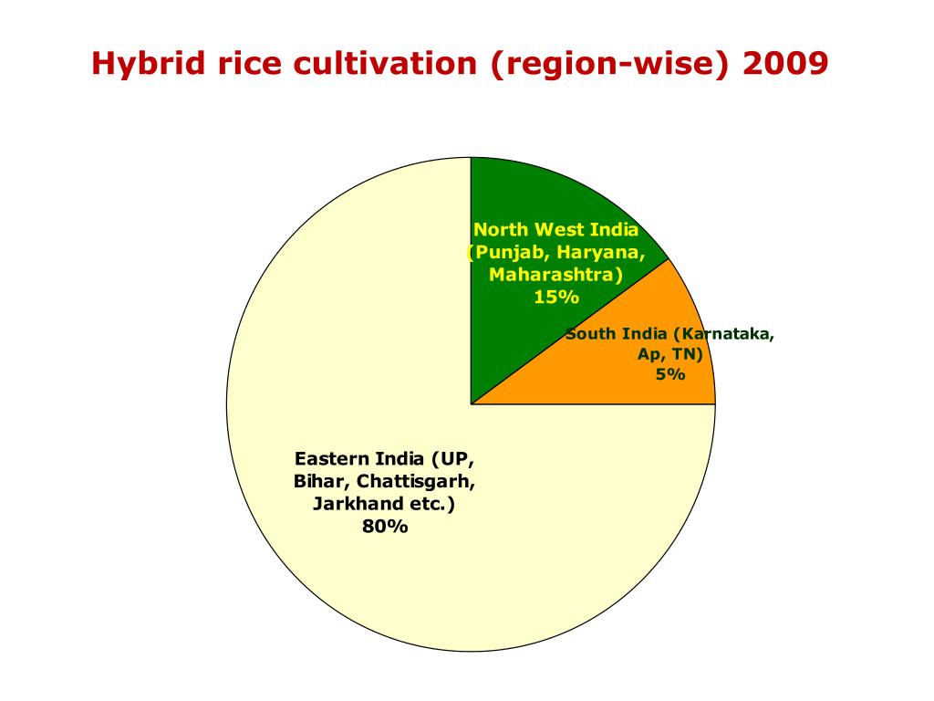 Hybrid rice cultivation (region-wise) 2009