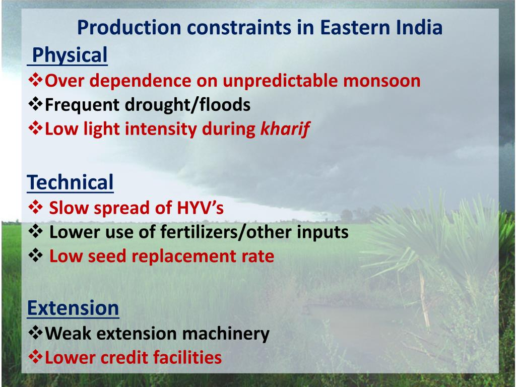 Production constraints in Eastern India