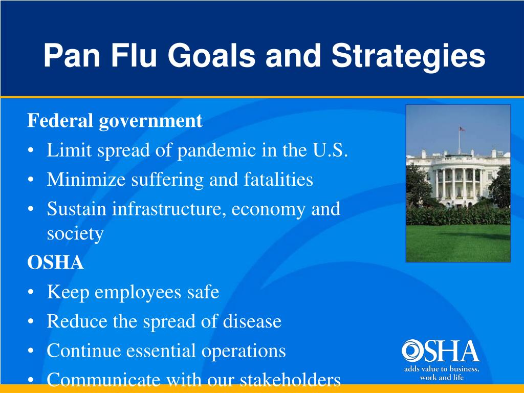 Pan Flu Goals and Strategies