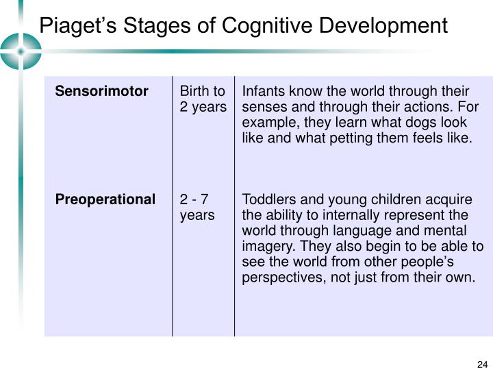 essay on piagets theory of cognitive development Piaget's theory of cognitive development the most well-known and influential theory of cognitive development is that of french psychologist jean piaget he originally trained in areas of biology and philosophy and considered himself a genetic epistimologist.