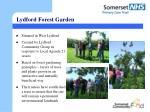 lydford forest garden