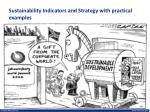 sustainability indicators and strategy with practical examples