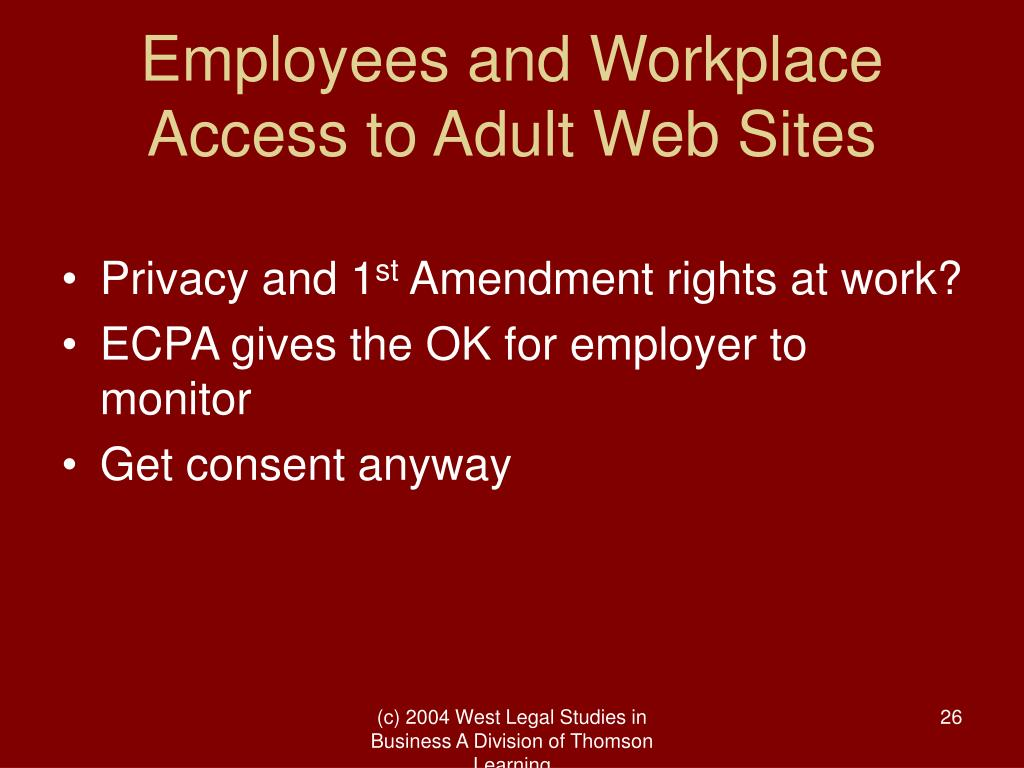 Employees and Workplace Access to Adult Web Sites