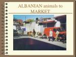 albanian animals to market