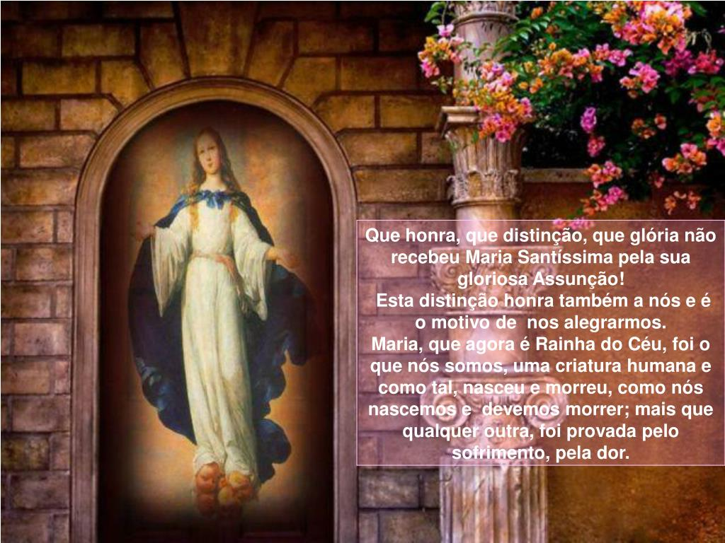 Que honra, que distinção, que glória não recebeu Maria Santíssima pela sua gloriosa Assunção!