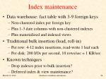 index maintenance