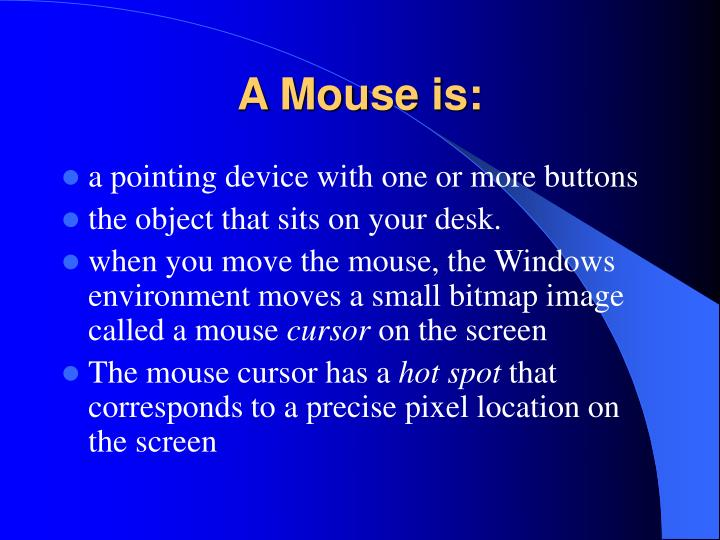 A mouse is