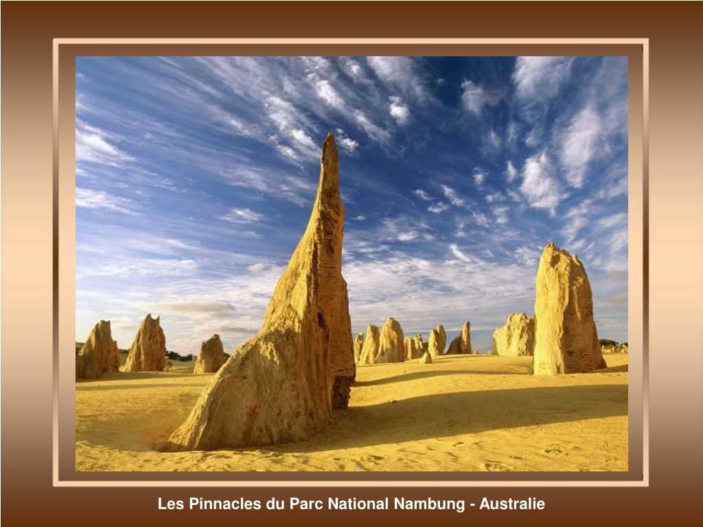 Les Pinnacles du Parc National Nambung - Australie