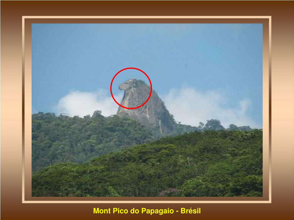 Mont Pico do Papagaio - Brésil