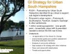 gi strategy for urban south hampshire