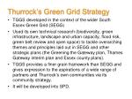 thurrock s green grid strategy