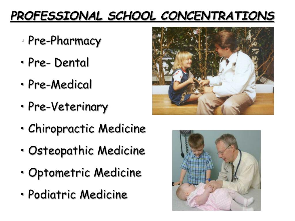 PROFESSIONAL SCHOOL CONCENTRATIONS