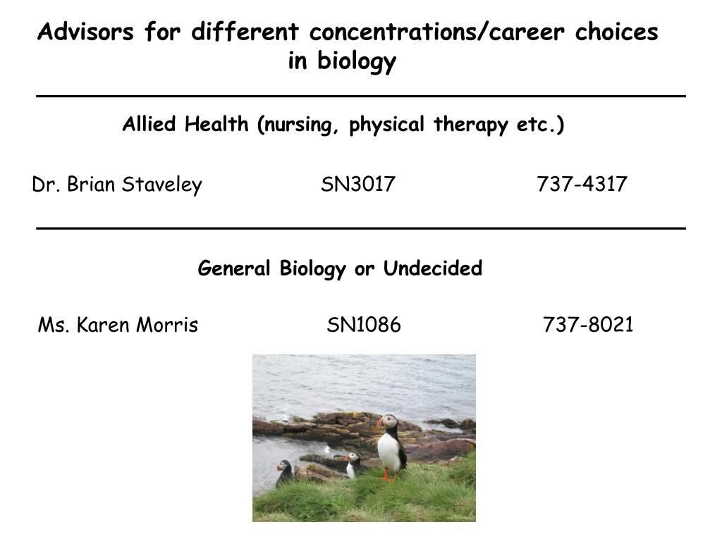 Advisors for different concentrations/career choices
