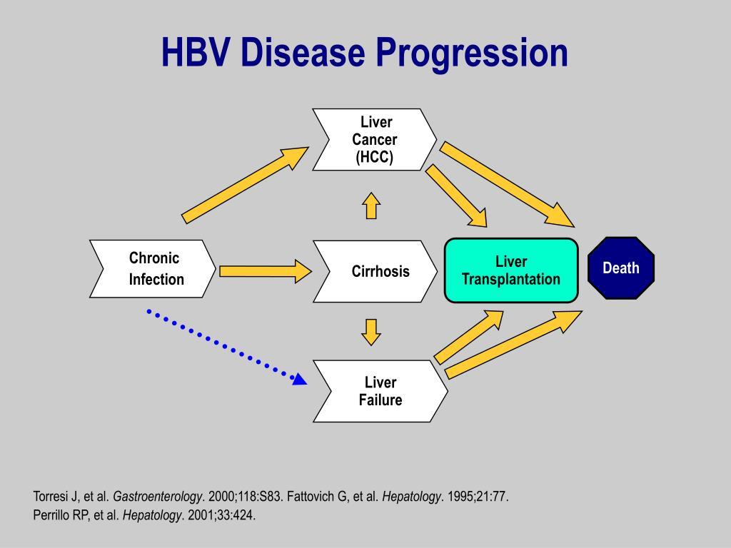 HBV Disease Progression
