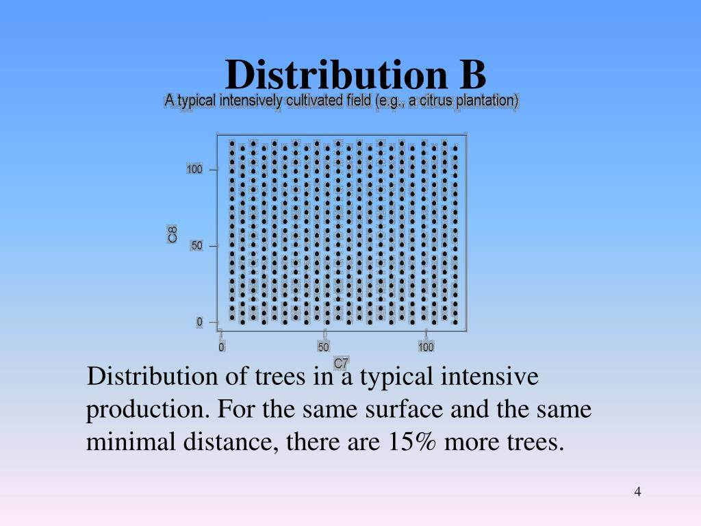 Distribution B