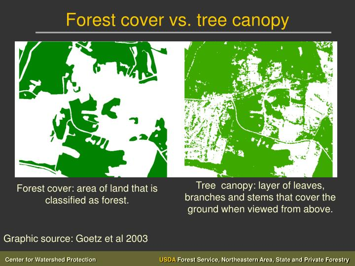Forest cover vs. tree canopy