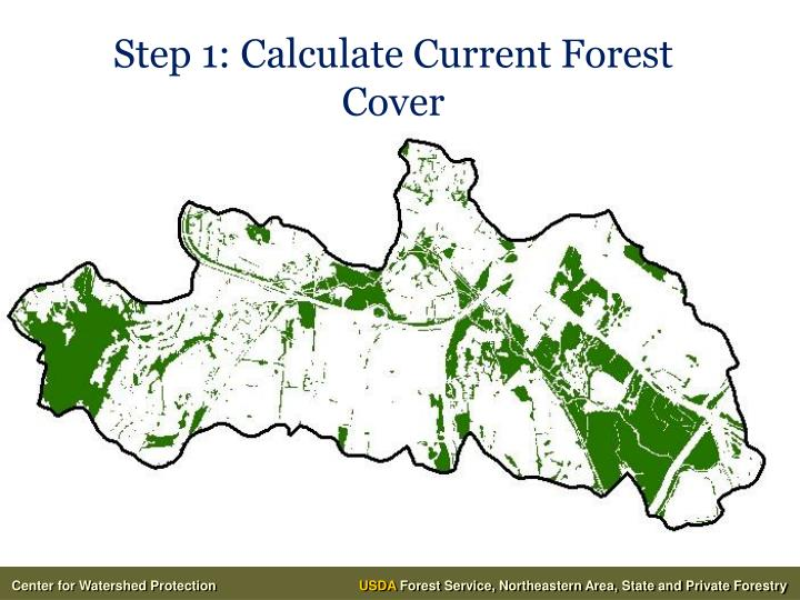 Step 1: Calculate Current Forest Cover