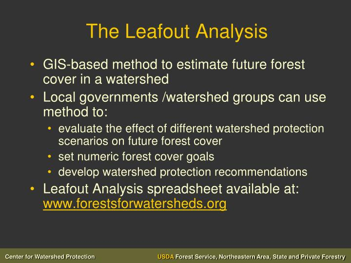 The Leafout Analysis
