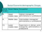 social economic demographic groups