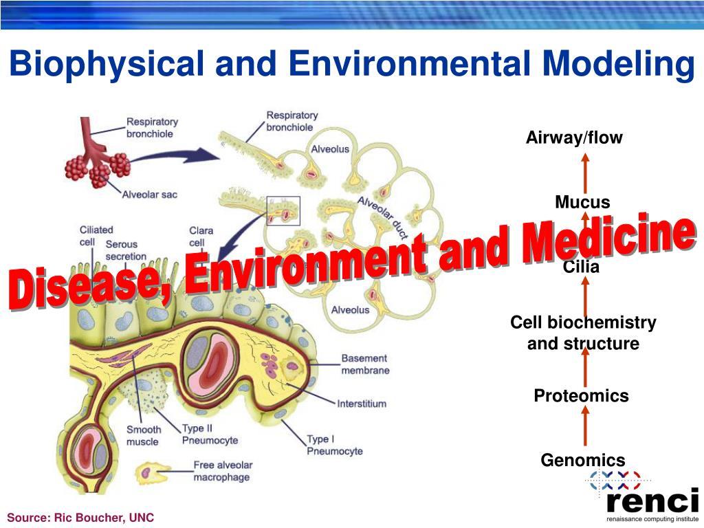 Biophysical and Environmental Modeling