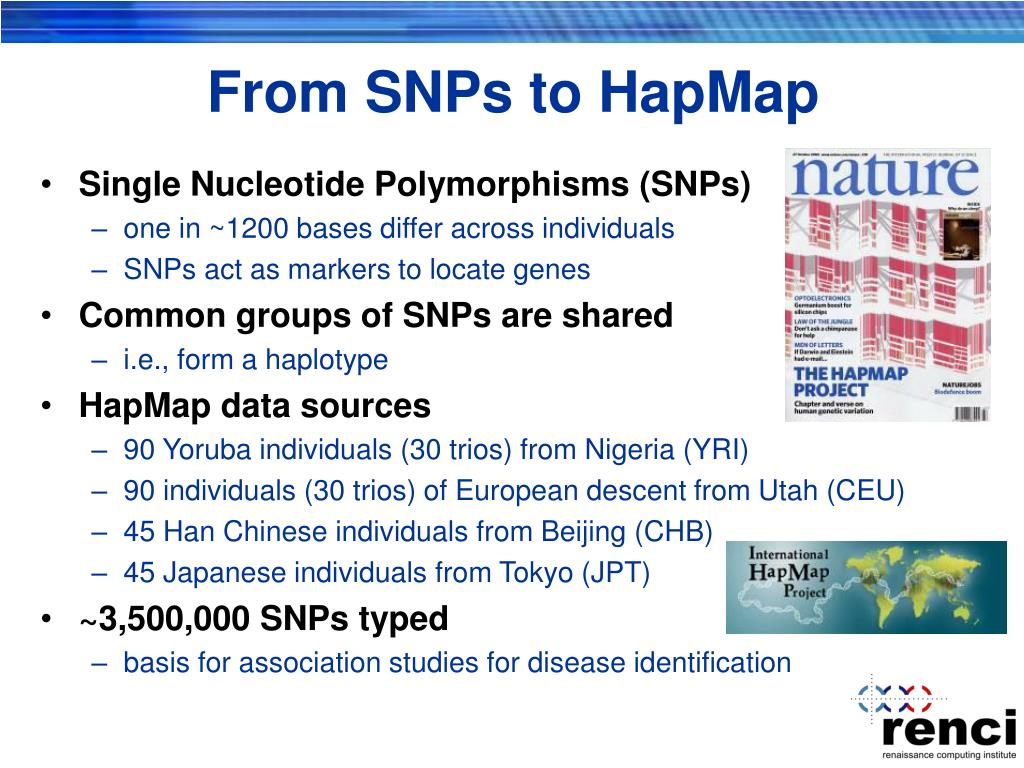 From SNPs to HapMap