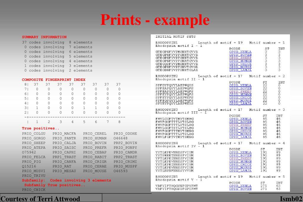Prints - example