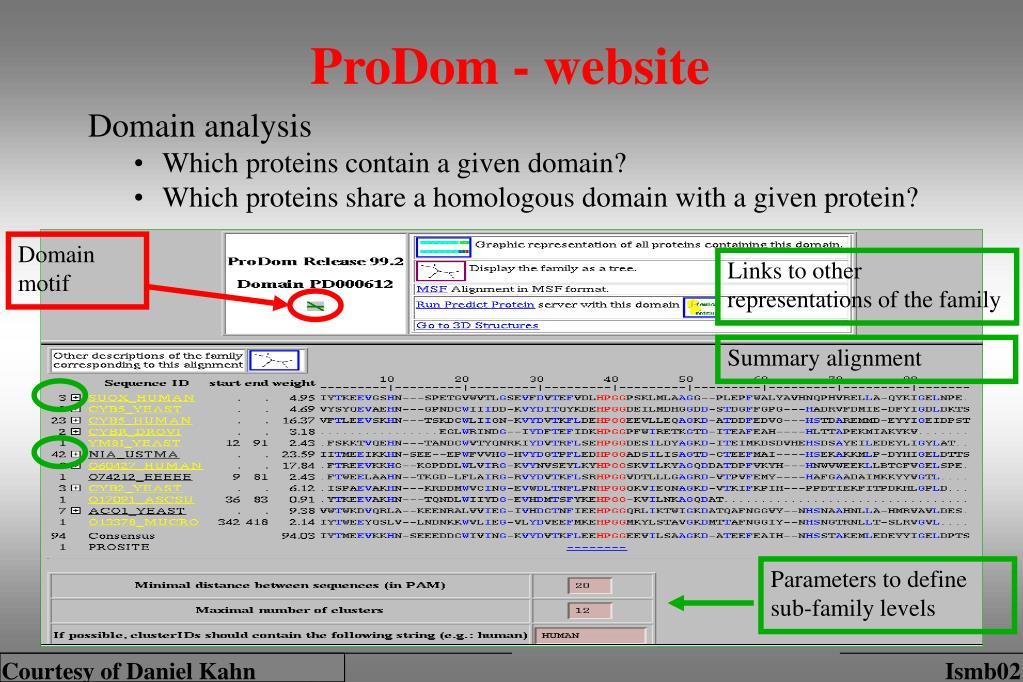 ProDom - website