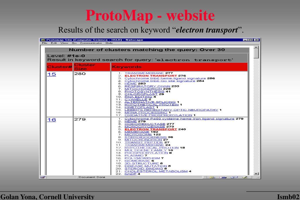 ProtoMap - website