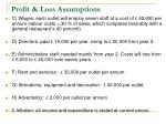 profit loss assumptions5