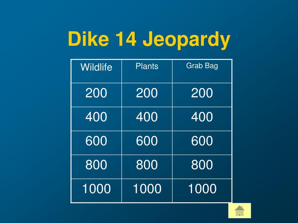 Dike 14 Jeopardy