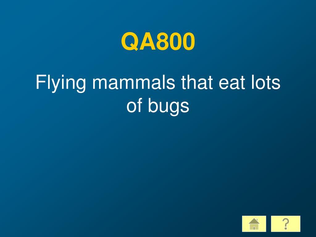 QA800
