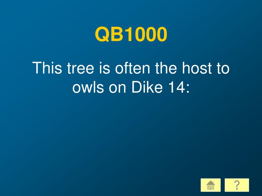 QB1000