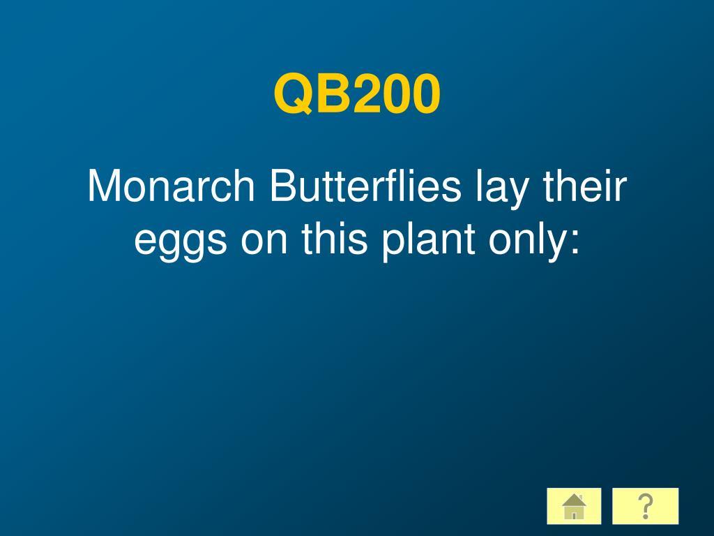 QB200
