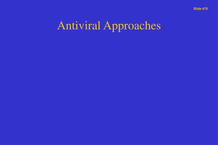 Antiviral Approaches