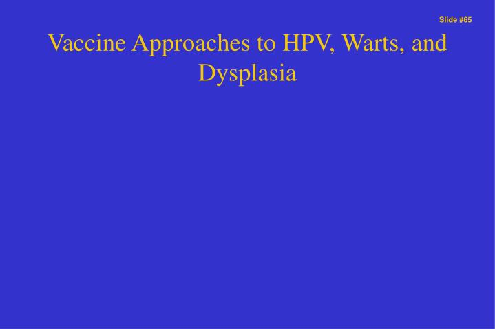 Vaccine Approaches to HPV, Warts, and Dysplasia