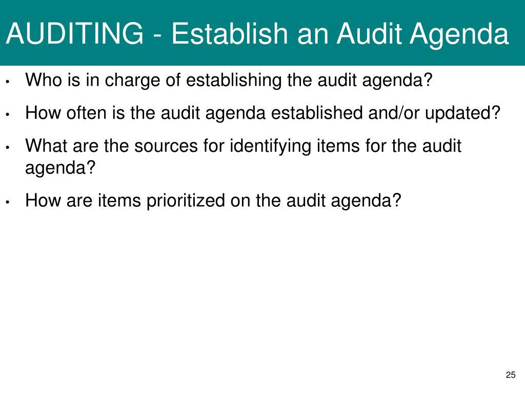 AUDITING - Establish an Audit Agenda