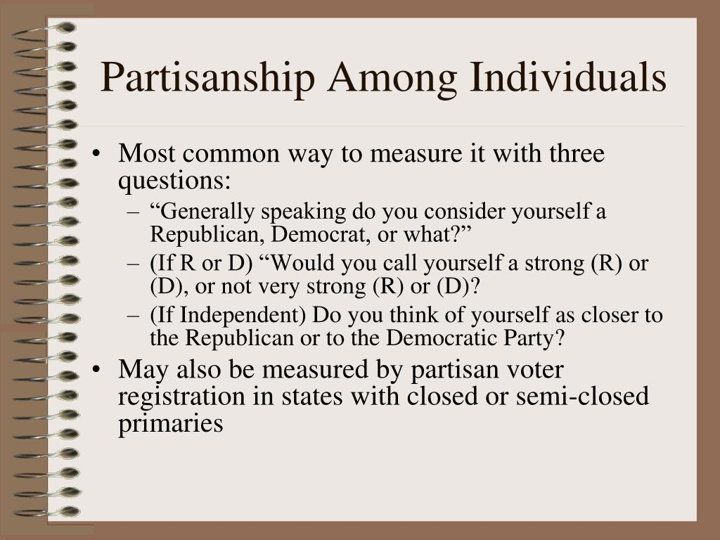 Partisanship Among Individuals