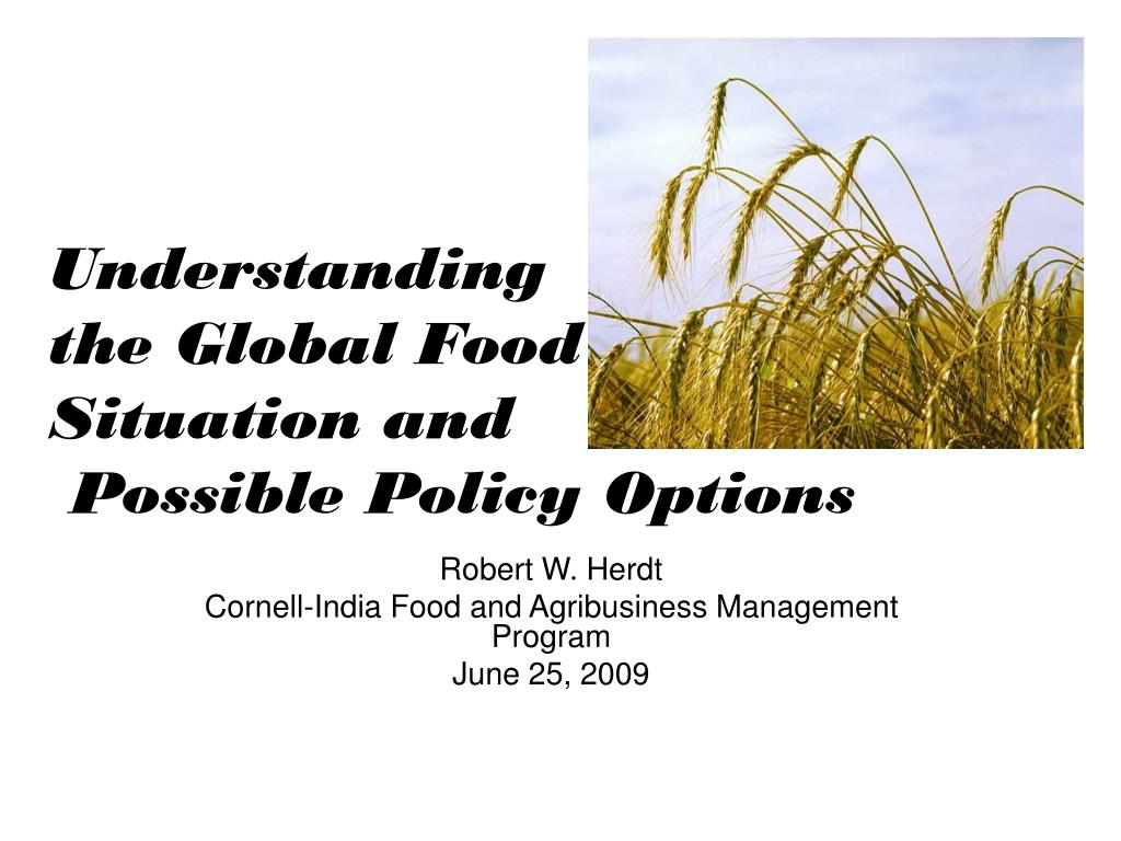 understanding the global food situation and possible policy options l.