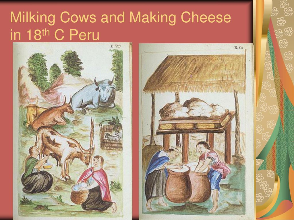 Milking Cows and Making Cheese in 18