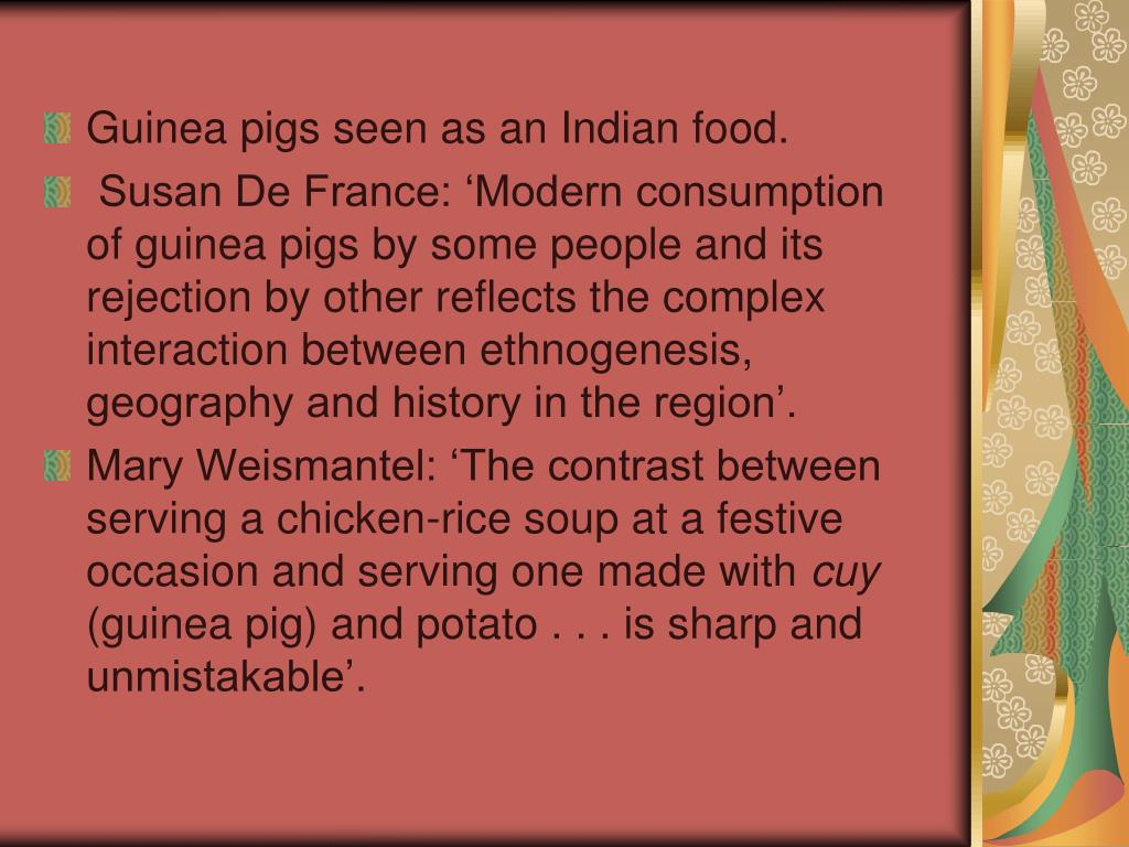 Guinea pigs seen as an Indian food.
