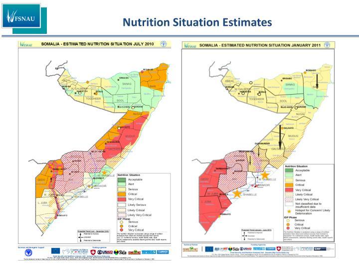 Nutrition Situation Estimates