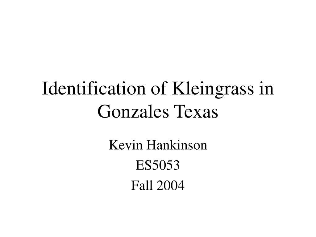 identification of kleingrass in gonzales texas