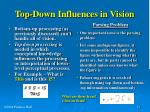 top down influences in vision
