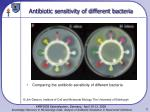 antibiotic sensitivity of different bacteria