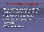 the minor leagues