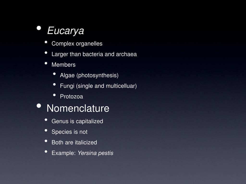 Eucarya