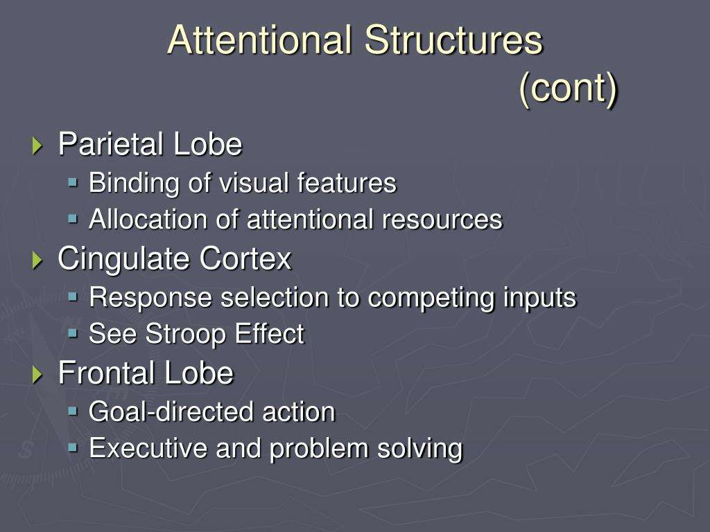 Attentional Structures