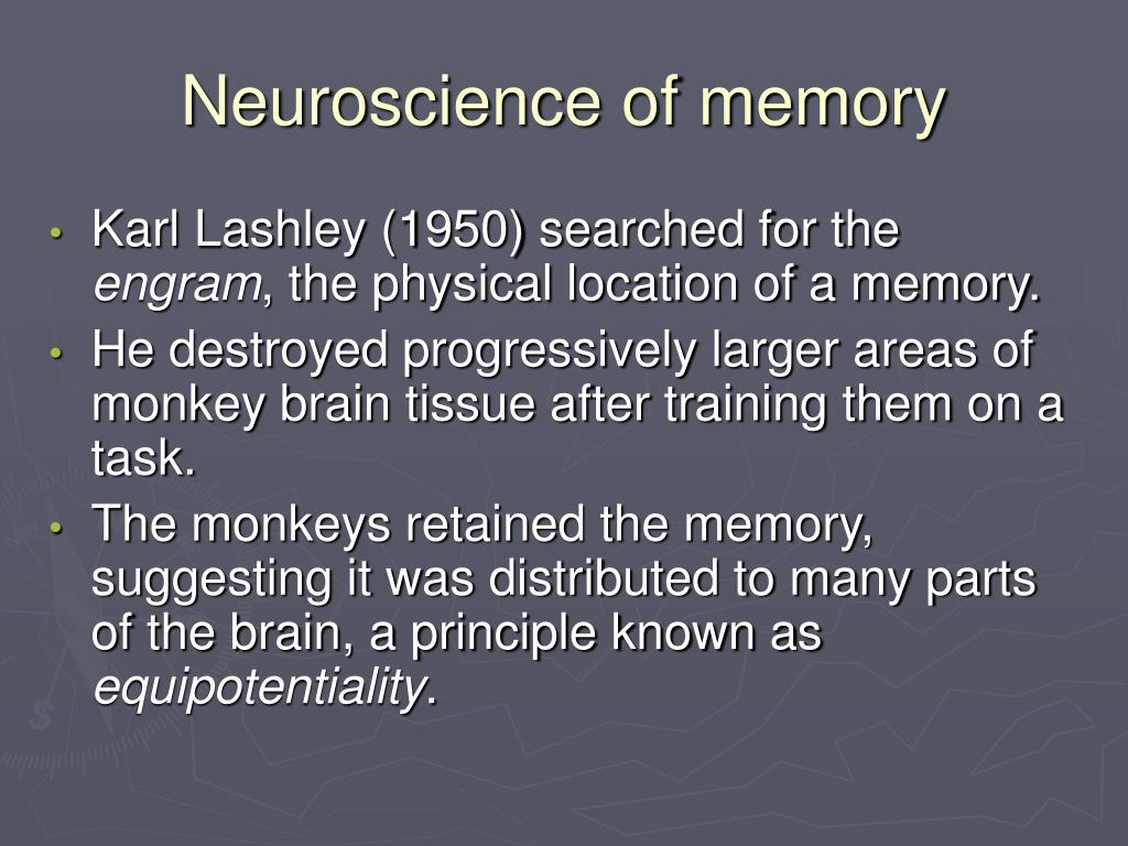Neuroscience of memory