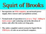 squirt of brooks