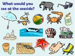 what would you see at the seaside